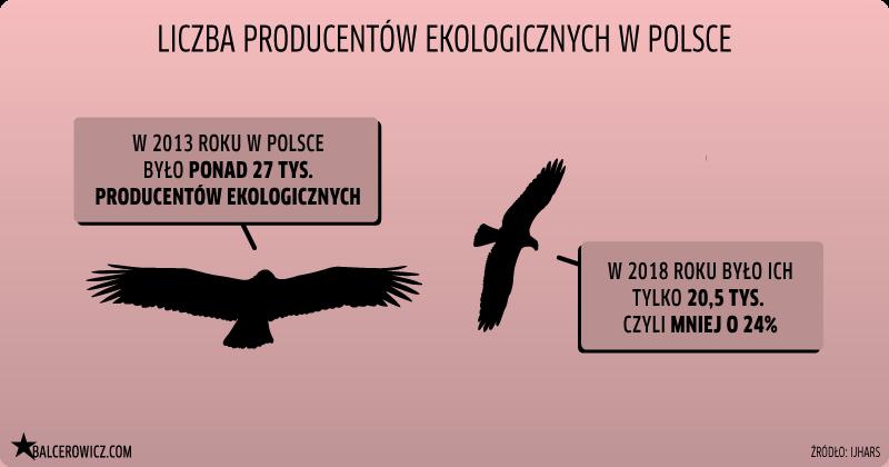 Liczba producentów ekologicznych w Polsce