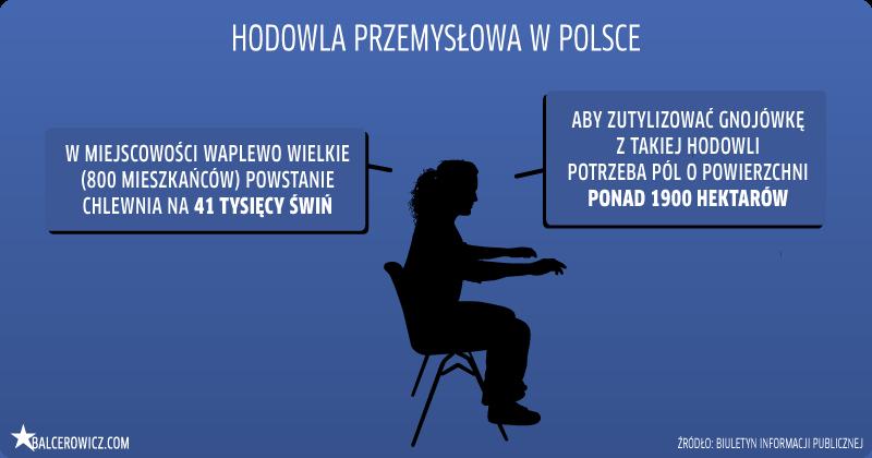 Hodowla przemysłowa w Polsce